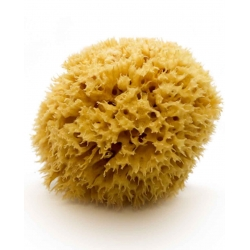 Natural Mediterranean Sea Sponge, 15 cm